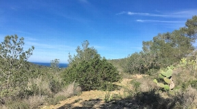 Finca for sale in Cala Vadella with 40.000m2 land