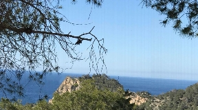 Land with licence to build in Cala Salada on Ibiza