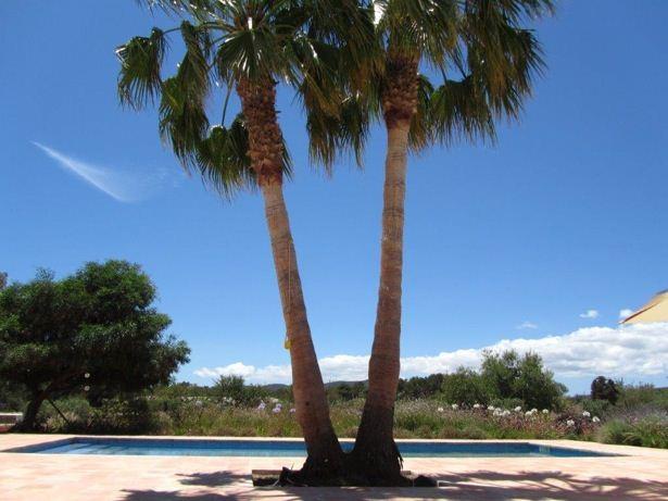 Graceful finca in a rural area in San Carlos on Ibiza for sale