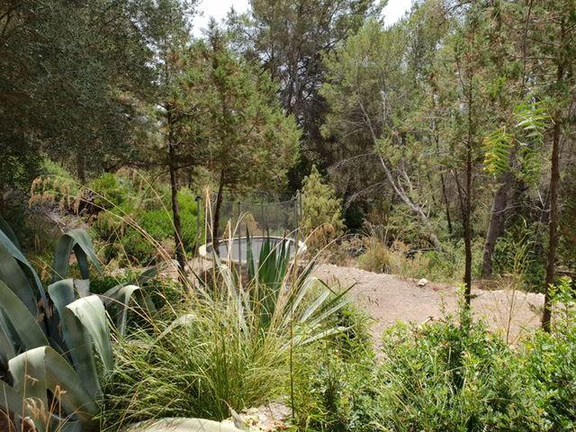Wonderful finca located on a big plot near Santa Gertrudis for sale