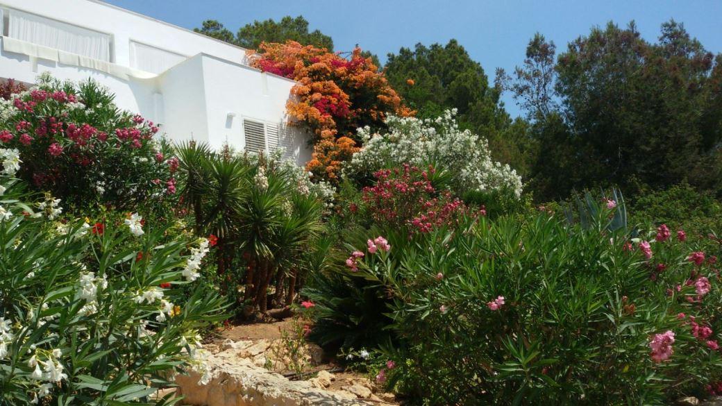 Unique villa for sale overlooking Las Salinas and the sea