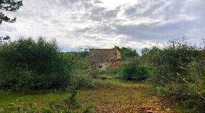 Big and ruined land of 72.000m² for sale in San Agustin