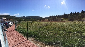 Superb land with licence for sale in san jose
