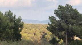 Plot for sale in Vista Alegre with sea views in Vista Alegre