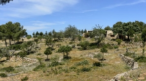 Authentic Ibizan finca situated in rural area between Jesús and Sta. Eulalia for sale